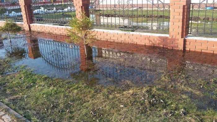 Весной при высоком УГВ на участке выступает вода на поверхности